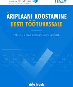 äriplaan Eesti Töötukassale, äriplaani koostamine, äriplaan, äriplaani juhend